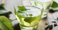 Taza con té verde.
