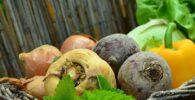 Ingredientes principales para ensaladas árabes: Remolacha, pimientos verdes, cebolla