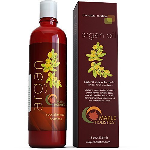 Argan Oil Shampoo, Sulfate Free, 8 oz. - With Argan, Jojoba, Avocado, Almond, Peach Kernel, Camellia Seed, and Keratin - 100% Safe for Color Treated Hair - For Men, Women, and Teens - All Hair Types - Most Beneficial Haircare Product Available by Maple Holistics